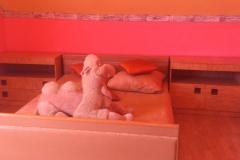 23 спальня розовая - копия